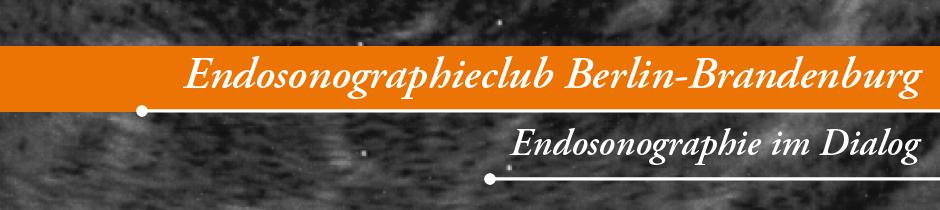 Endosonographietag Berlin Brandenburg Eus Literatur